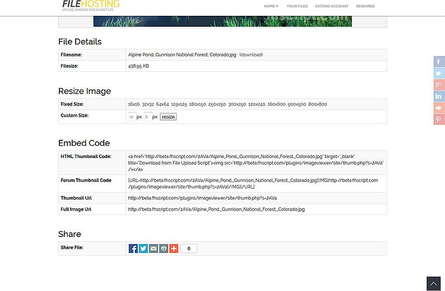 pdf viewer embed in website